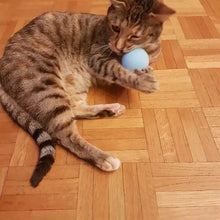 Load image into Gallery viewer, Chirping Ball™ Cat Toy