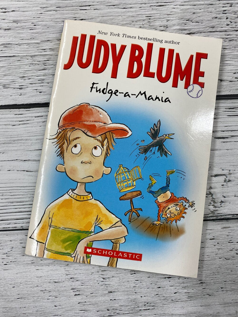 Judy Blume Fudge-a-mania - Kids books
