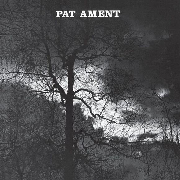 Pat Ament - Songs By Pat Ament LP