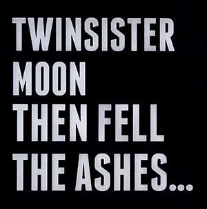 TwinSisterMoon - Then Fell The Ashes CD