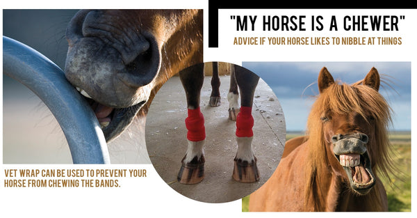 EQU Streamz bands instructions to cre for bands with a horse who chews at things
