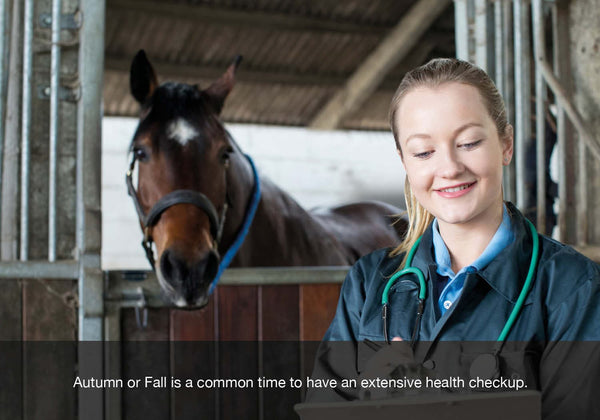 EQU Streamz autumn or fall health checklist blog image. Seeing a vet for a full health check is common at this time of year.