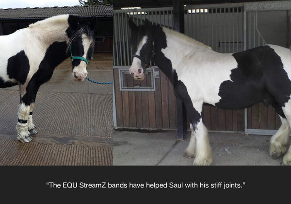 EQU Streamz feedback on Saul using his advanced magnetic bands to aid his stiffness and arthritic joints
