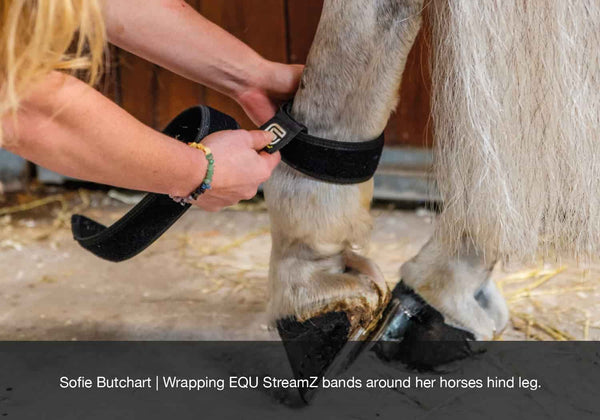 Sofie Butchart wrapping equ streamz advanced magnetic therapy bands around her horses hock