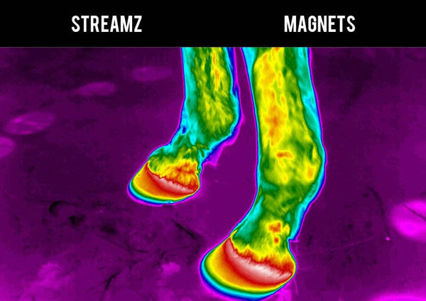 Thermal Imagining study EQU Streamz versus traditional magnetic technology no heat create suitable for 24/7 use and immediately after exercise image 3