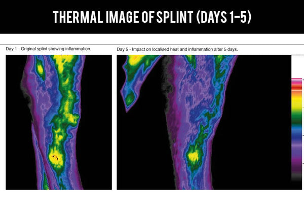 Thermal imaging study on EQU Streamz advanced magnetic bands for horses image 3