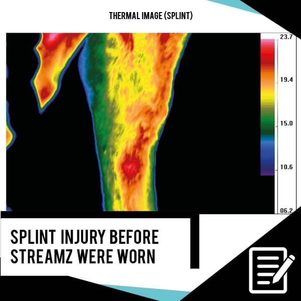 EQU Streamz Thermal Imaging Study no heat created by streamz advanced magnetic action image on day one priorto equ streamz bands being fitted to fetlock over splint injury