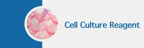 cell culture reagents collagen and PCR mycoplasma kit MD Bioproducts