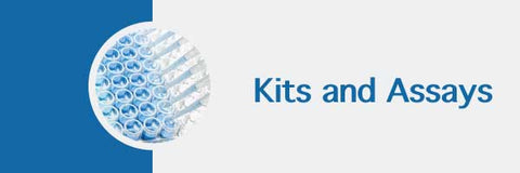 MD Bioproducts ELISA kits and assay
