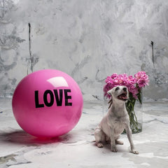 Big Love Ball - 2ft