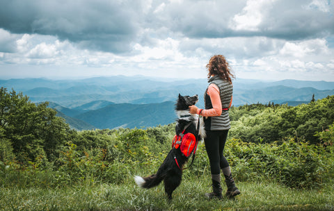 Kristina holding Draco the border collie's paws as they look out on the mountainscape.