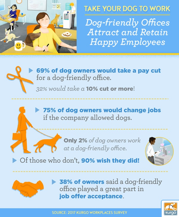 Take Your Dog to Work: Dog-Friendly Office Attract and Retain Happy Employees