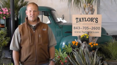 Mulches and Decorative Rock Ground Coverings | Taylor's Quality Landscape Supply & Nursery
