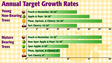 Annual Target Growth Rates