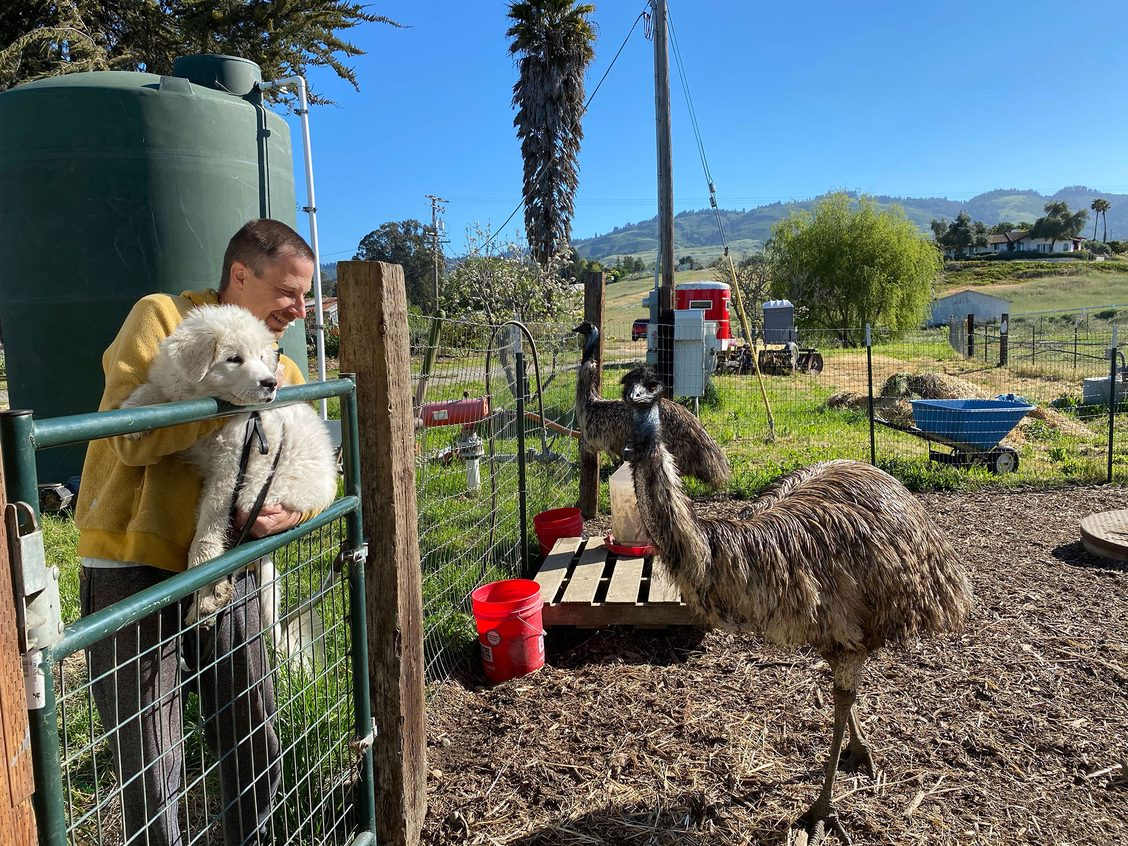 Delphine meets Ricky the emu