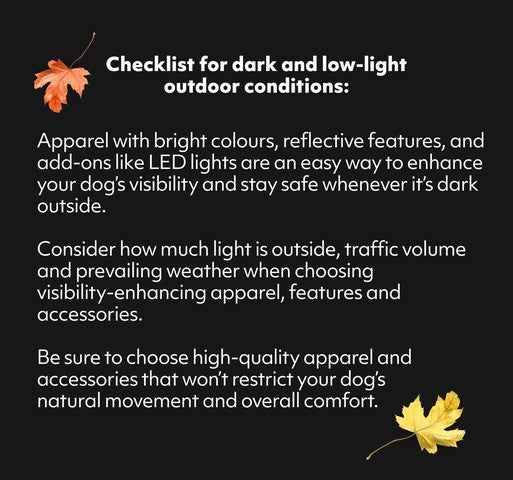 tips for being seen in the dark