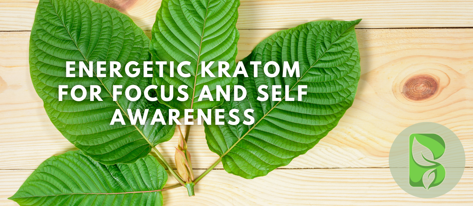 Energetic Kratom For Focus And Self Awareness