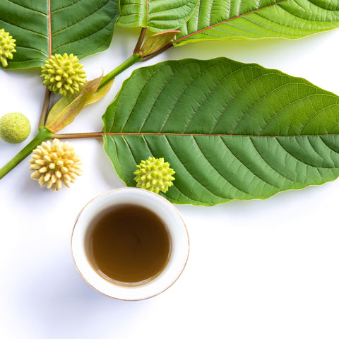 Golden Lotus Kratom SpecialTea