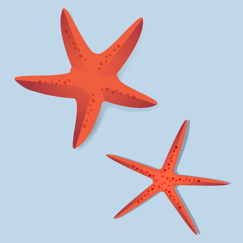 Red Starfish SpecialTea