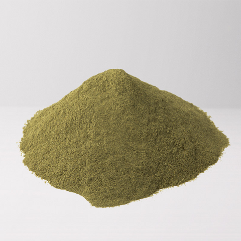 White Malay Kratom Strain