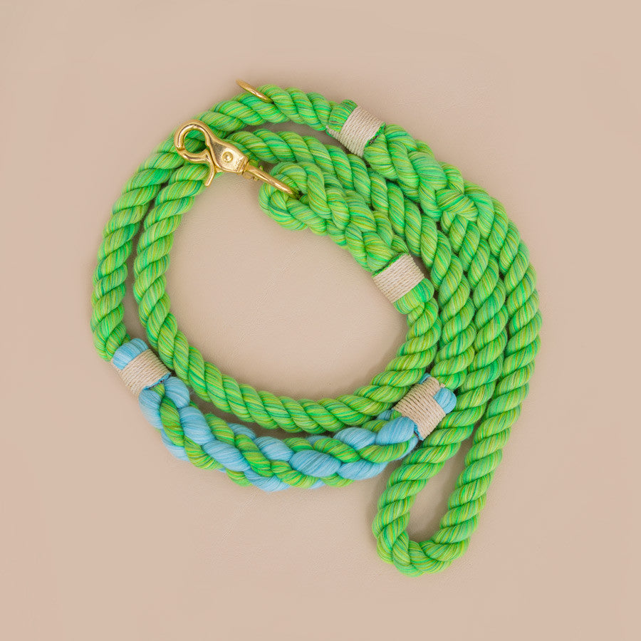 Limited Edition Cruiser Leash - LASSO