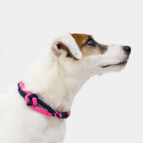 Polaris Rope Collar Petit