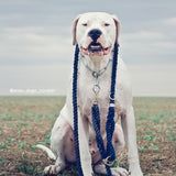All-Around Rope Leash - LASSO