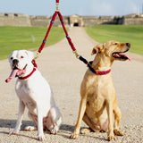 Splitter Rope Leash - LASSO