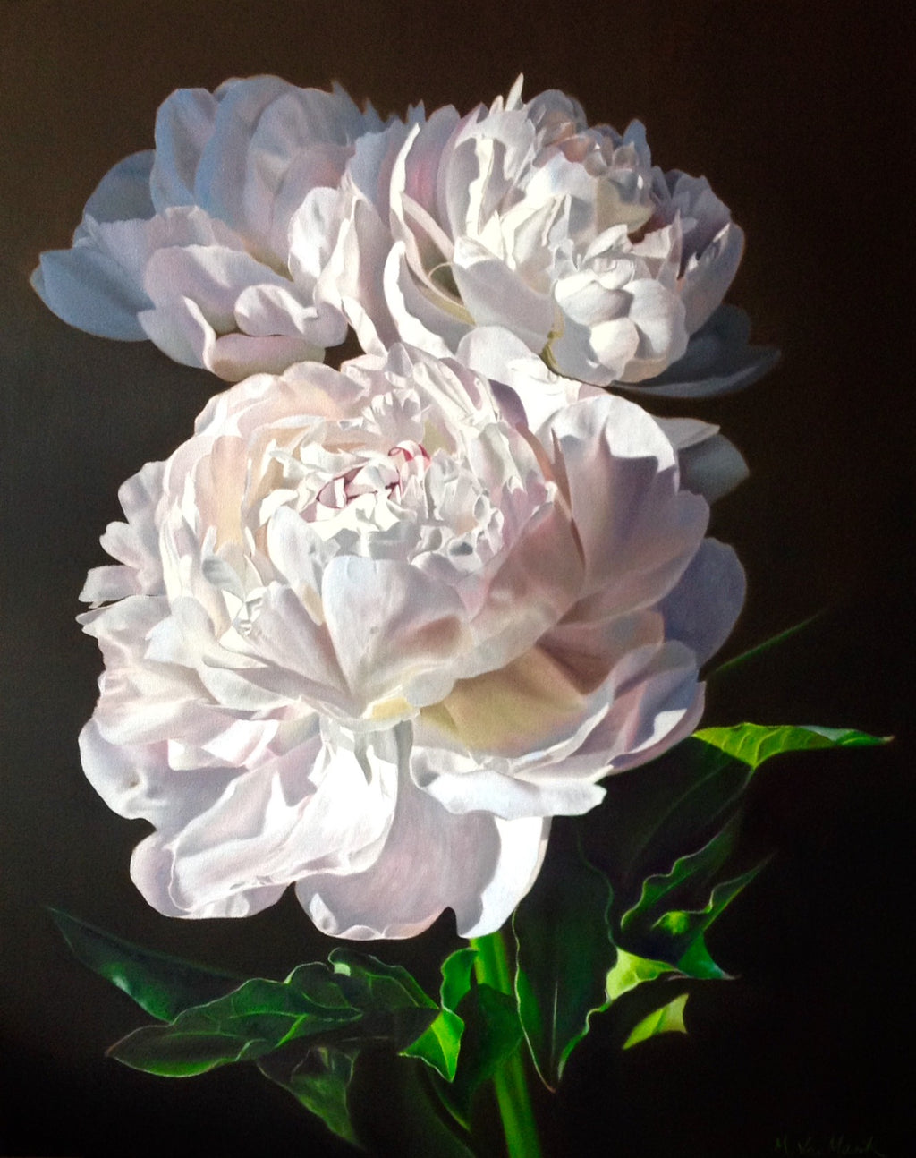 White Peonies -Limited Edition Signed Print