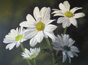 Limited Edition Print - Wild Daisies
