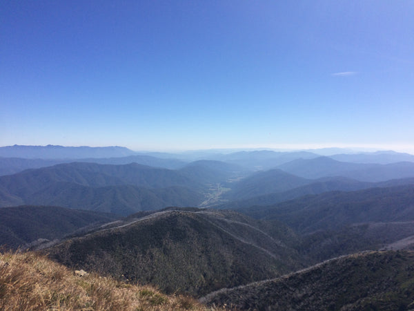 36,000 Steps – Mount Feathertop via The Razorback