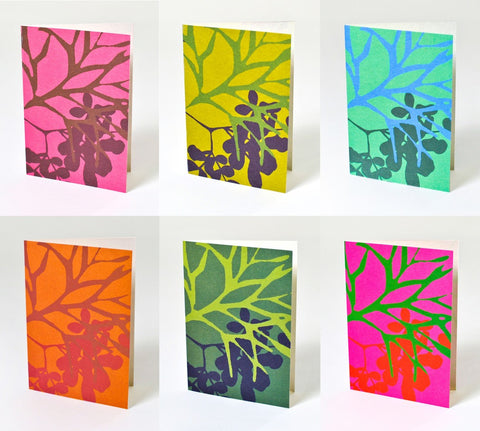 Boxed art cards, bold organics