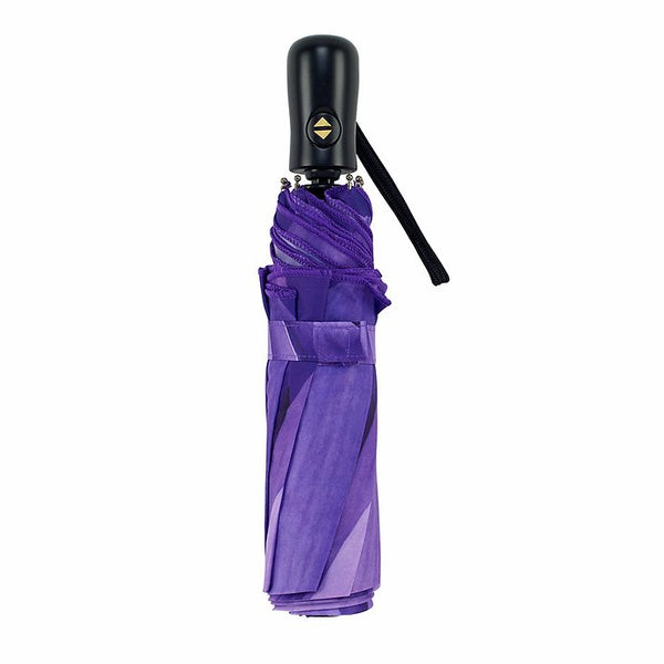 Automatic wind-resistant umbrella, purple daisy design