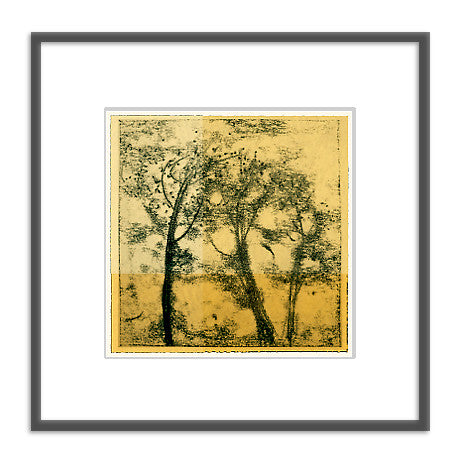 Framed art photography: Trees in Ink Gold