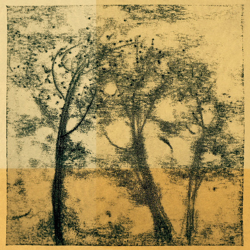 Framed art photography: Trees in Ink Gold - Terrestra