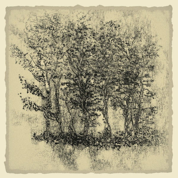 Framed art photography: Trees in Ink 2