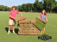 Zeon Zoysia Sod<br>(Available soon in most Markets)