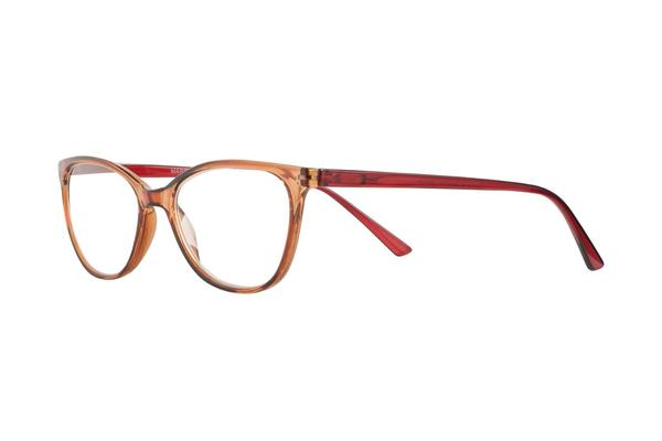 reading glasses marron transparent red brown