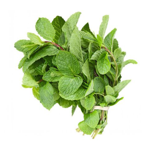 MINT LEAVES (PUDHINA)