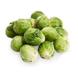 BRUSSLES SPROUT