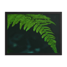 Load image into Gallery viewer, Oh My Fern Framed poster