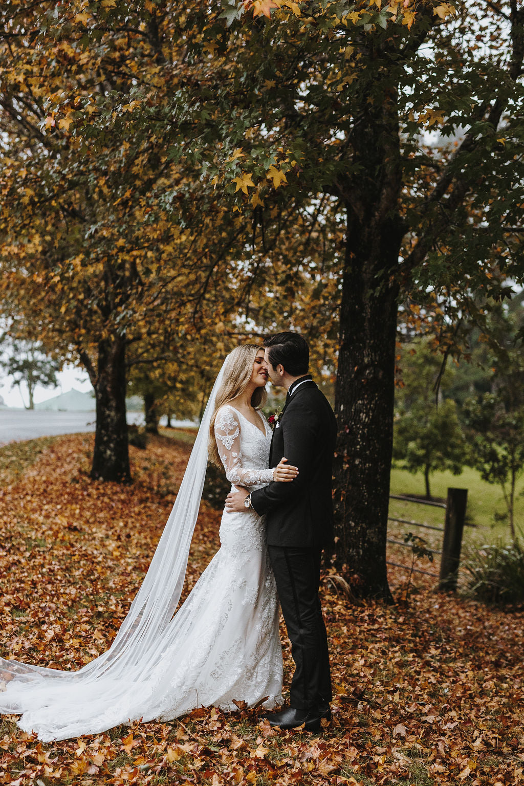 buy fit and flare lace wedding gown Adelaide