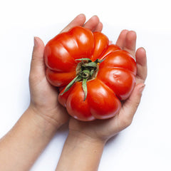 large tomato in cupped hands