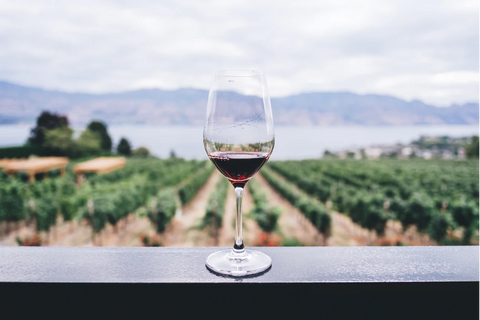 A wine glass in front of a vineyard