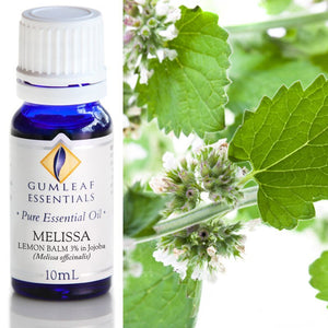 Melissa Lemon Balm (3% In Jojoba) Essential Oil 10ml