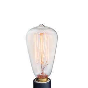 Electric Fragrance Warmer Replacement Edison Bulb - 15W NP3