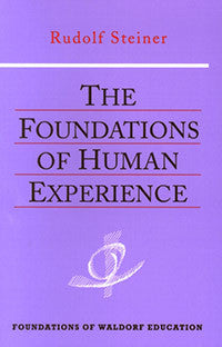The Foundations of Human Experience (CW 293)