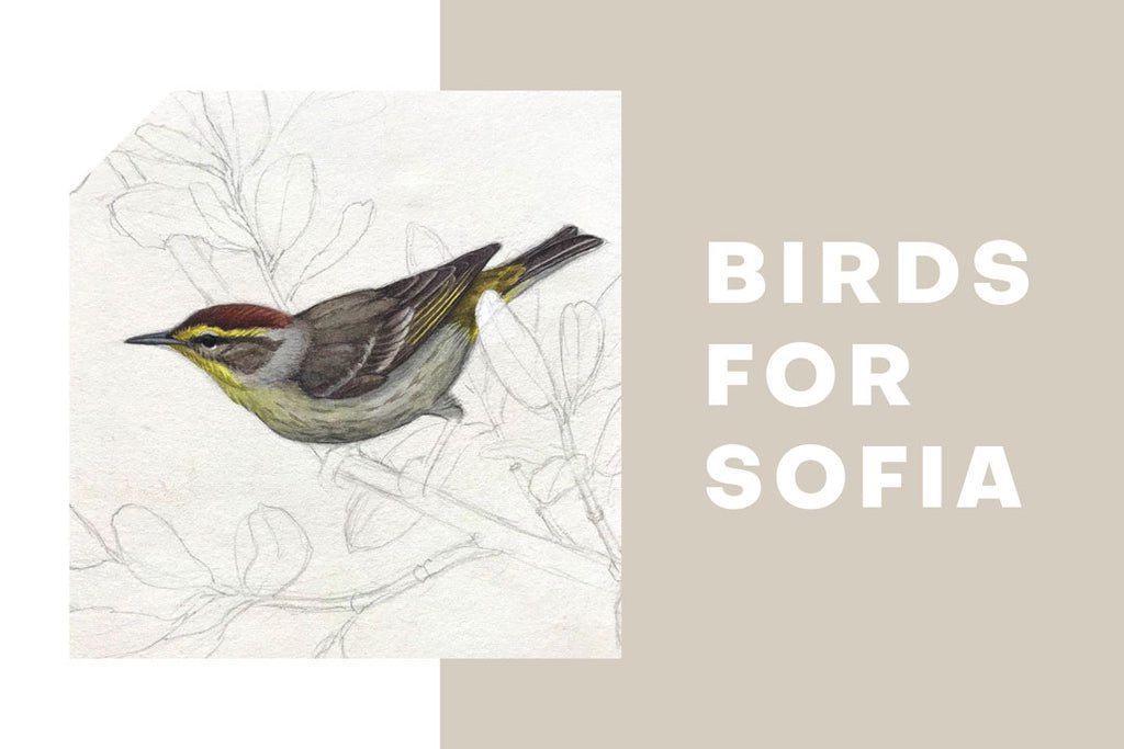 Birds for Sofia