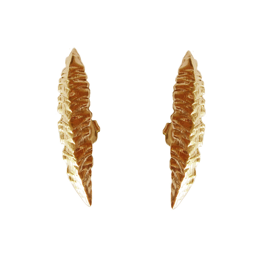 Cycad Fang Ear Crawlers