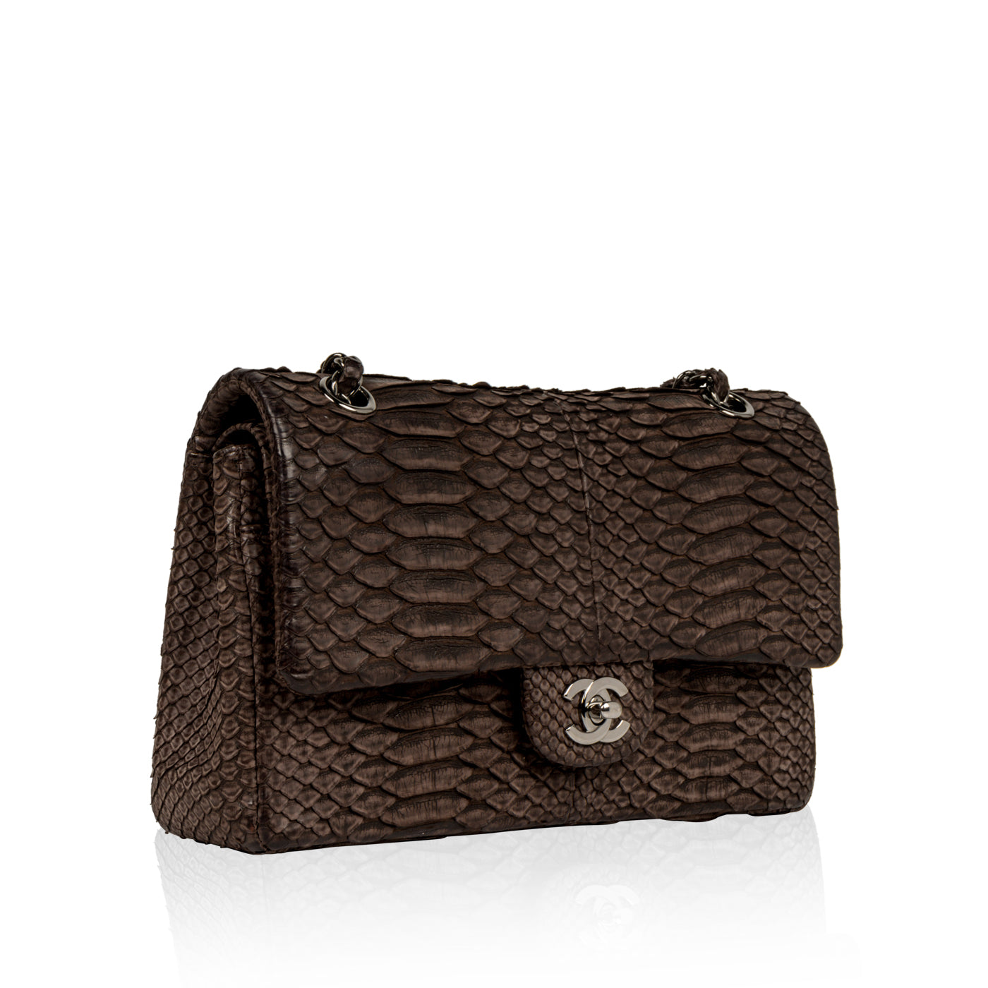 7617e3613807 Chanel - Classic Flap Bag - Python - Brown | Bagista